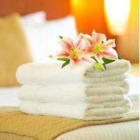 Imported Hotel Towels